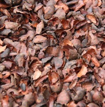 cocoa husk bulk