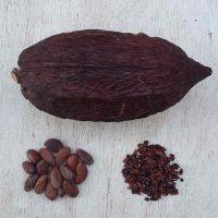 cocoa-pod-nibs-husks